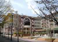 Du học Nhật Bản: Đại học Waseda